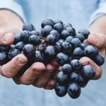 Causas de la hipertensión y su prevención